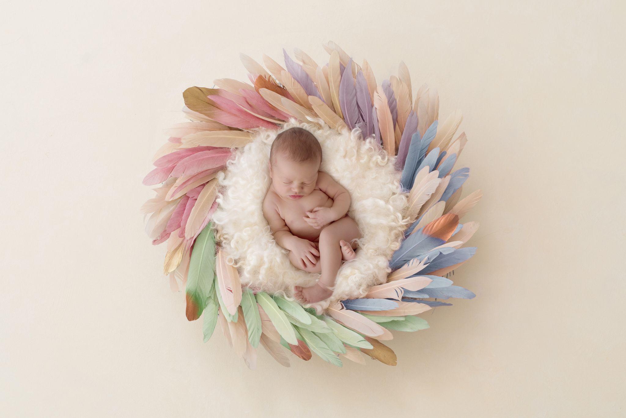 Baby in einem Federnest aus Regenbogenfarben bildet das Cover für meine Regenbogen Shootings