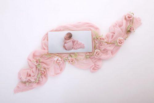 Rechteckiger Photoblock der Fotografin Zisch-Ortner als Motiv ein mit einem rosa Tuch zugedeckten Baby
