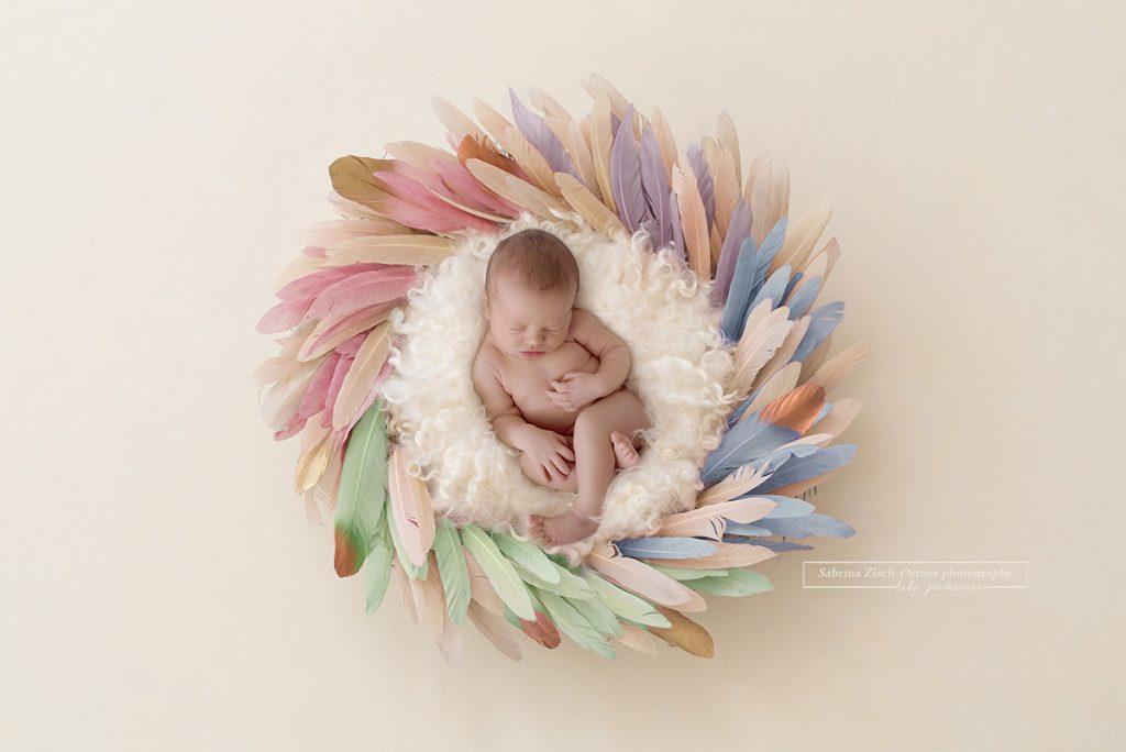 Composing eines Regenbogen Babys im Federnest gemacht von Sabrina Zisch-Ortner