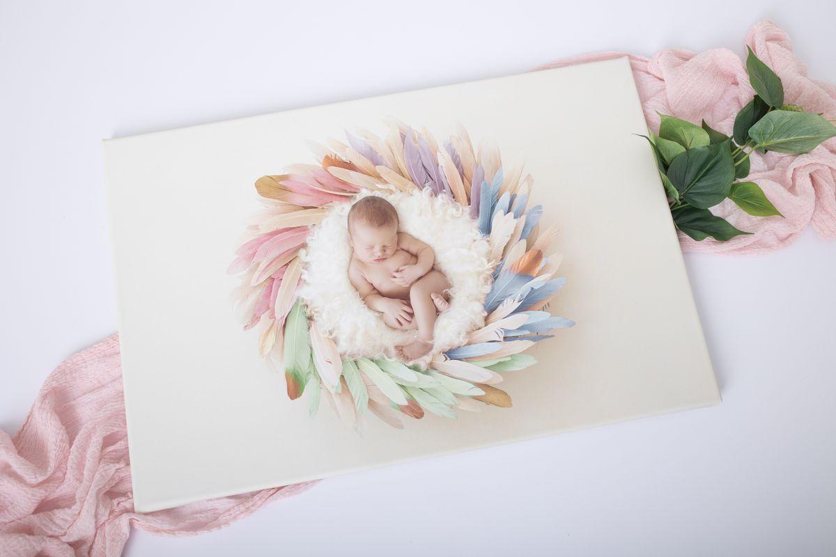 Leinwand Foto Regenbogen Baby in Nest aus Federn